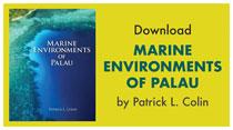 Download Marine Environments of Palau